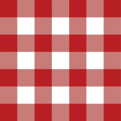 "Chemica 15"" x 6"" RED GINGHAM Pattern Heat transfer"
